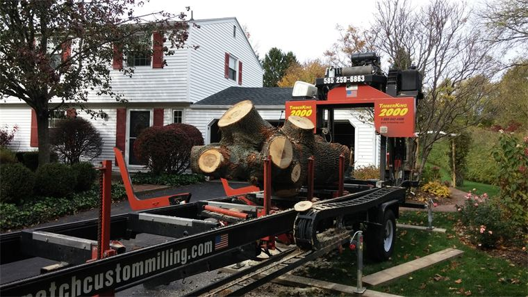 Maple tree milled on-site in Fairport, NY