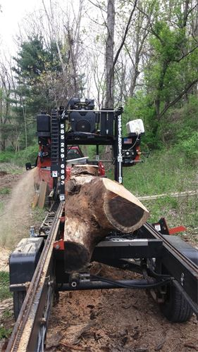 Milling a cherry tree trunk on-site